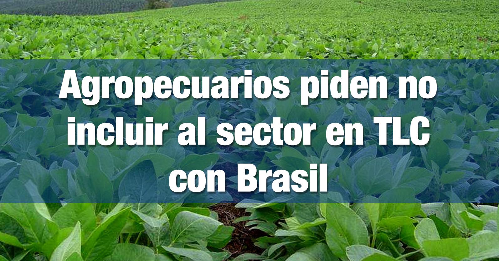 Agropecuarios piden no incluir al sector en TLC con Brasil
