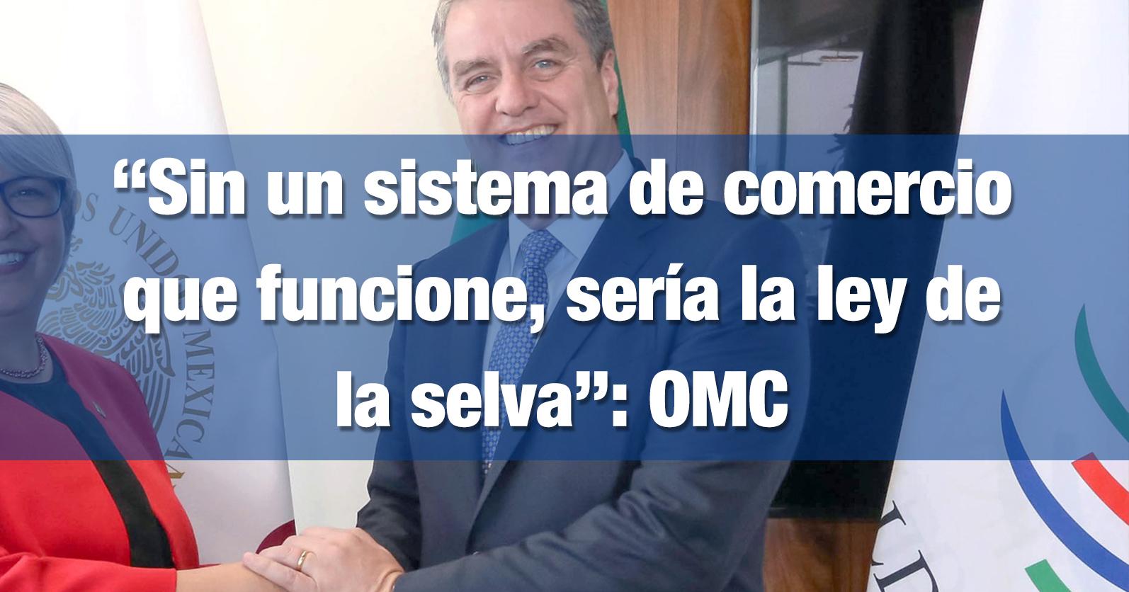 """""""Sin un sistema de comercio que funcione, sería la ley de la selva"""": OMC"""