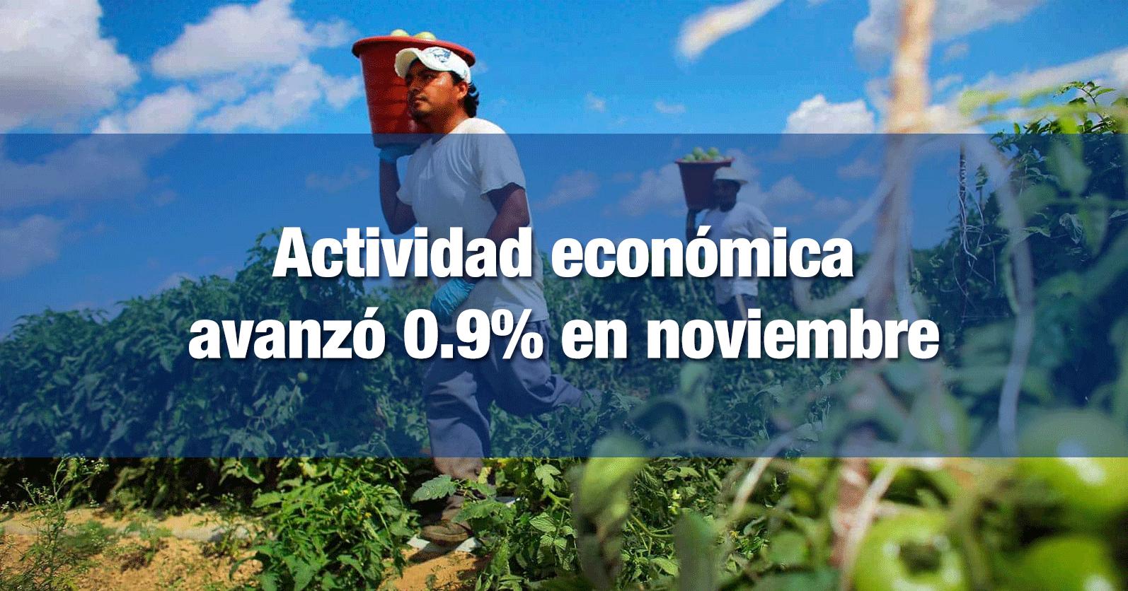 Actividad económica avanzó 0.9% en noviembre