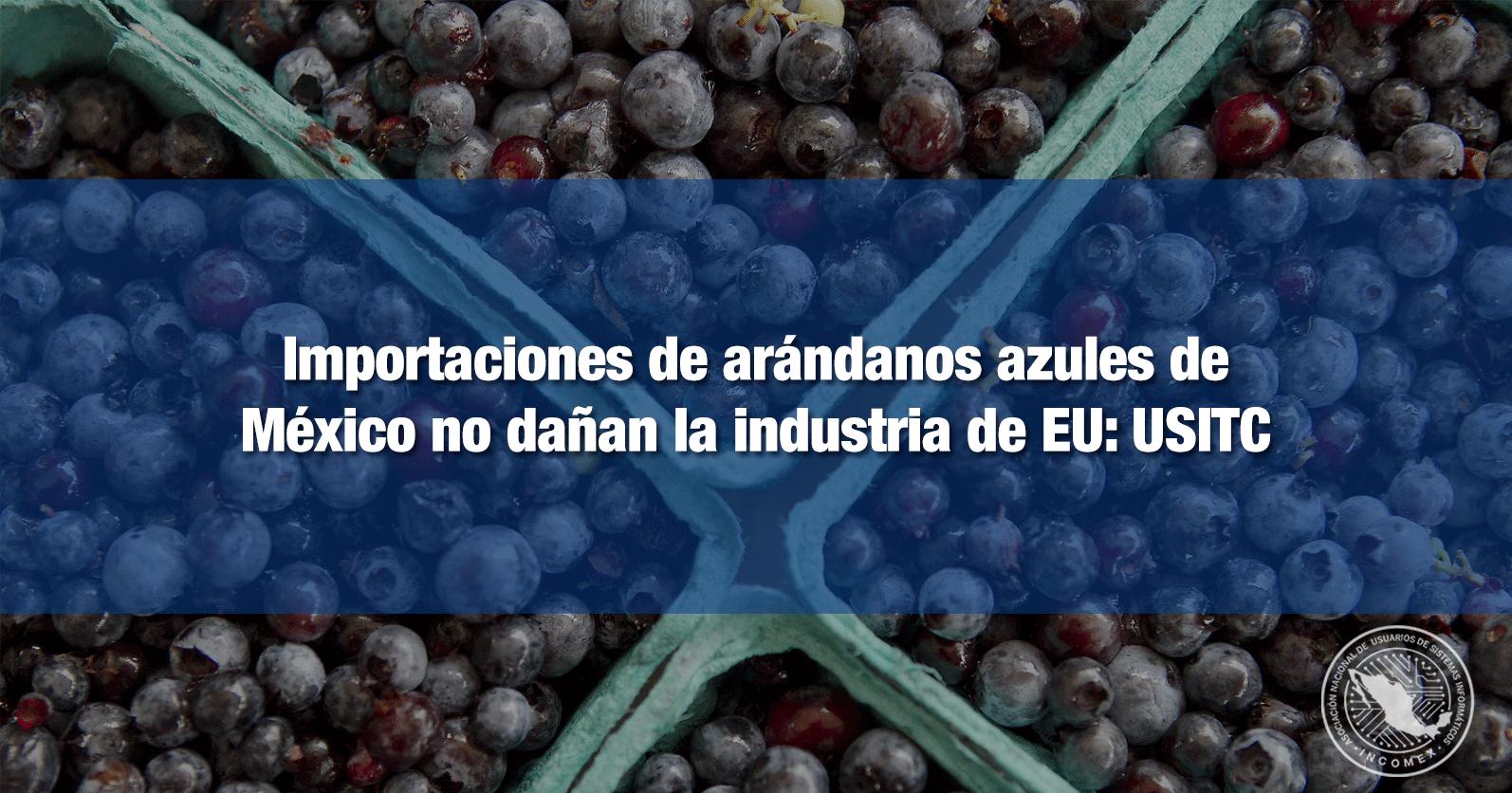 Importaciones de arándanos azules de México no dañan la industria de EU: USITC