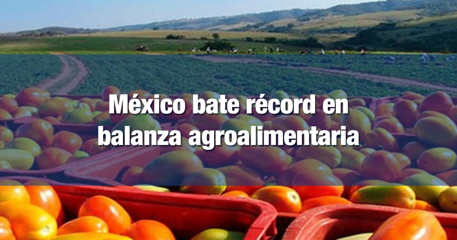 México bate récord en balanza agroalimentaria