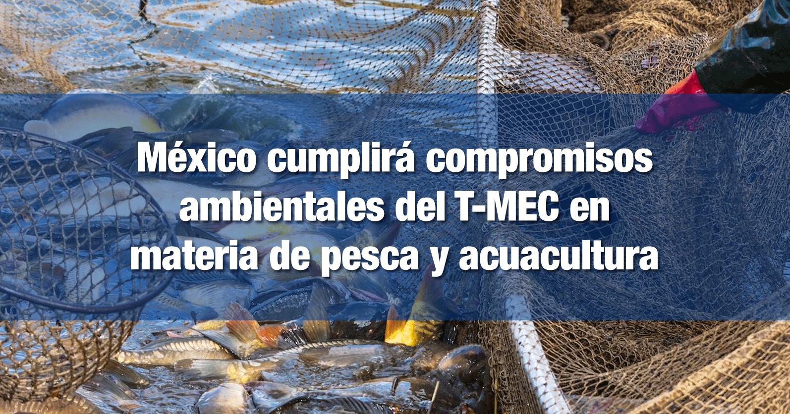 México cumplirá compromisos ambientales del T-MEC en materia de pesca y acuacultura