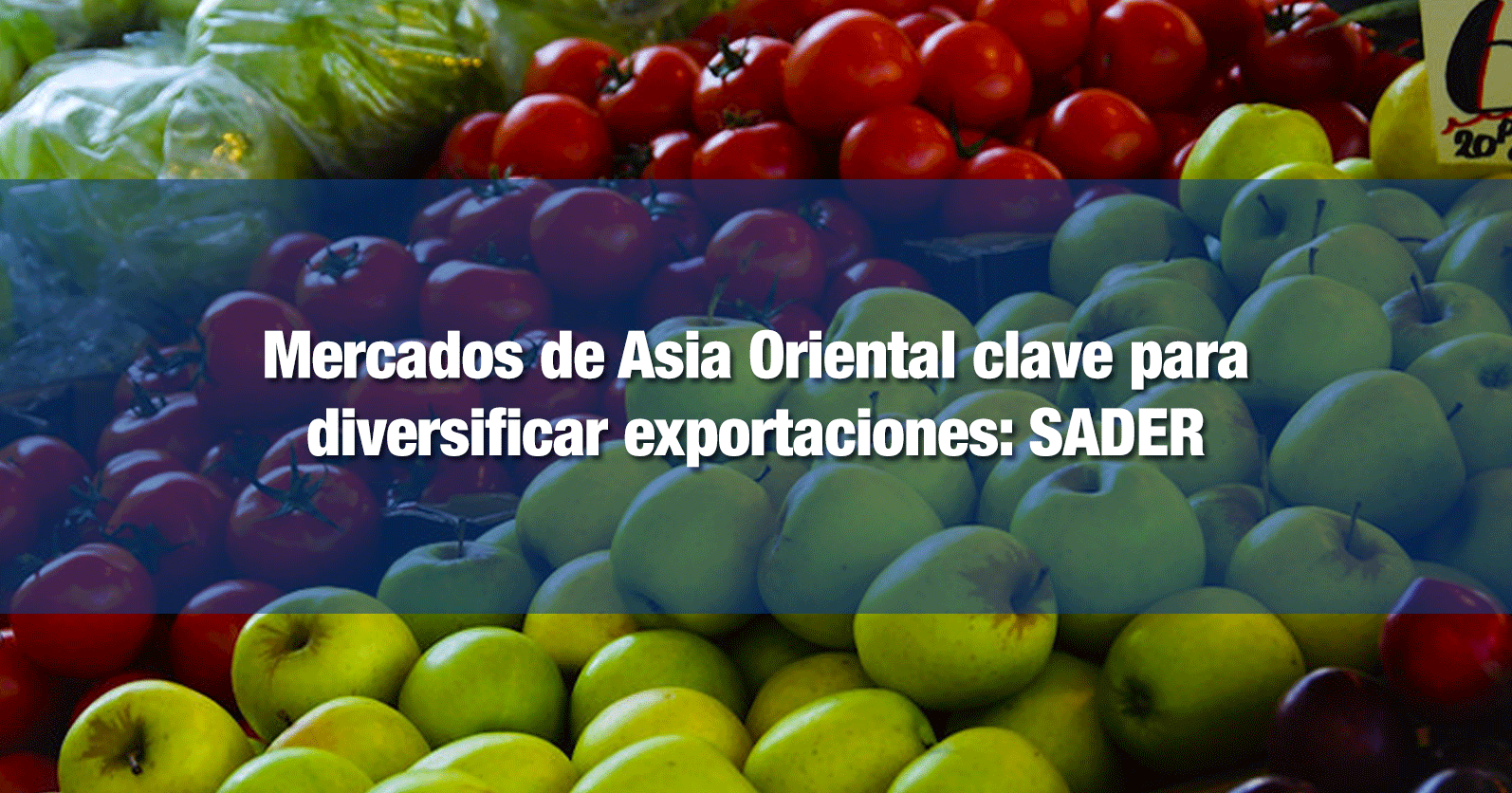 Mercados de Asia Oriental clave para diversificar exportaciones: SADER