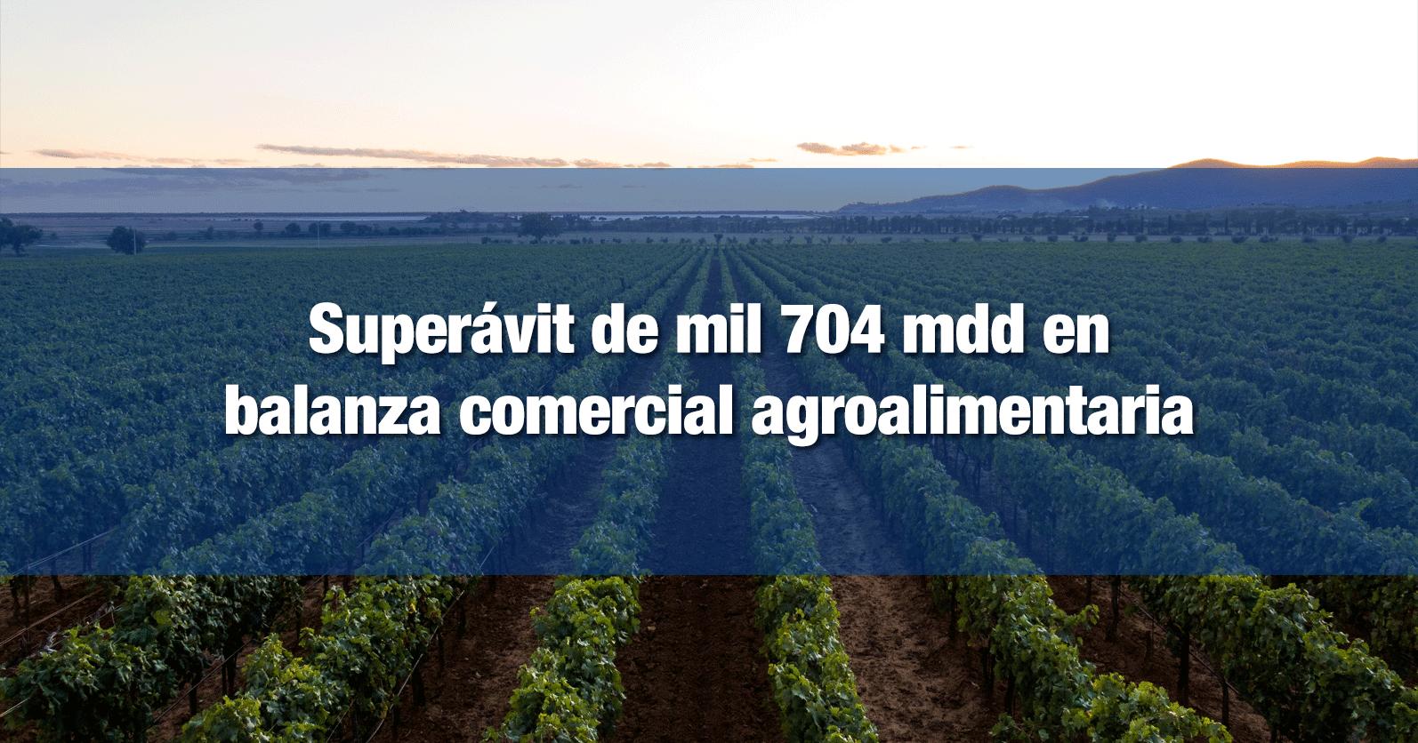 Superávit de mil 704 mdd en balanza comercial agroalimentaria
