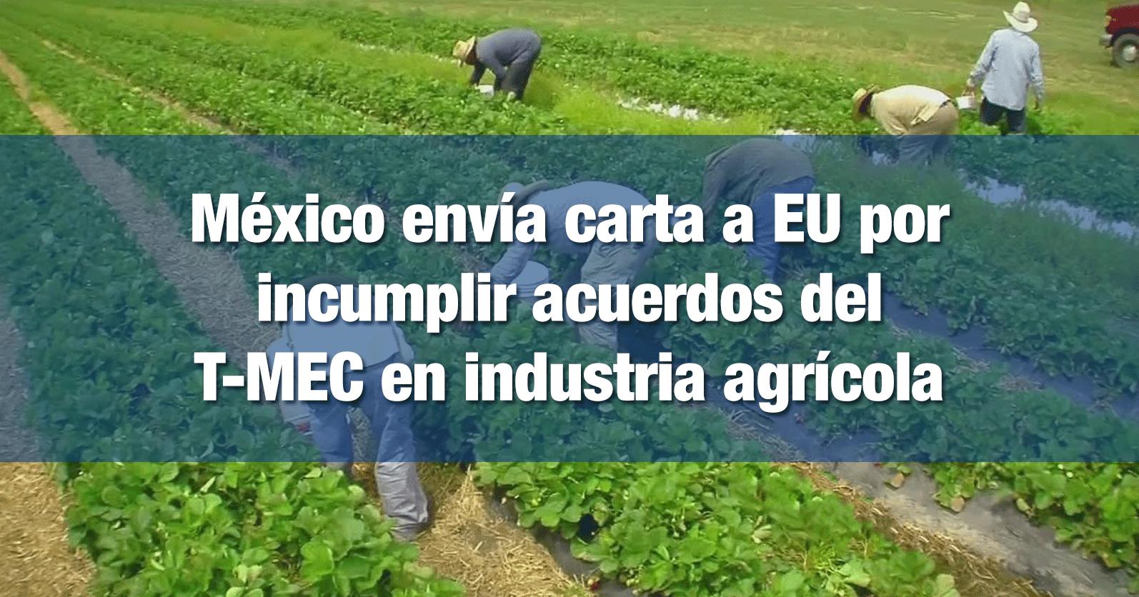 México envía carta a EU por incumplir acuerdos del T-MEC en industria agrícola