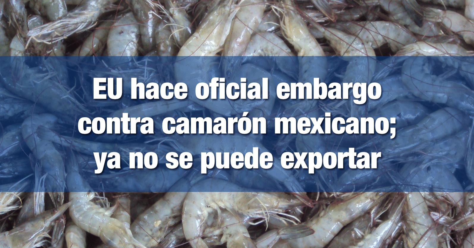 EU hace oficial embargo contra camarón mexicano; ya no se puede exportar