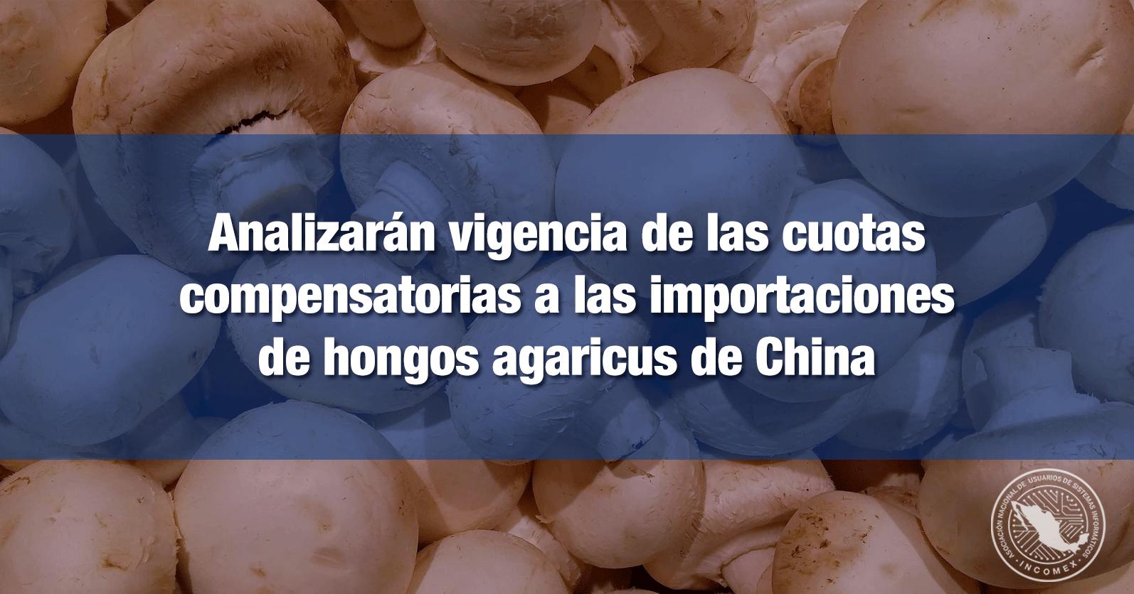 Analizarán vigencia de las cuotas compensatorias a las importaciones de hongos agaricus de China