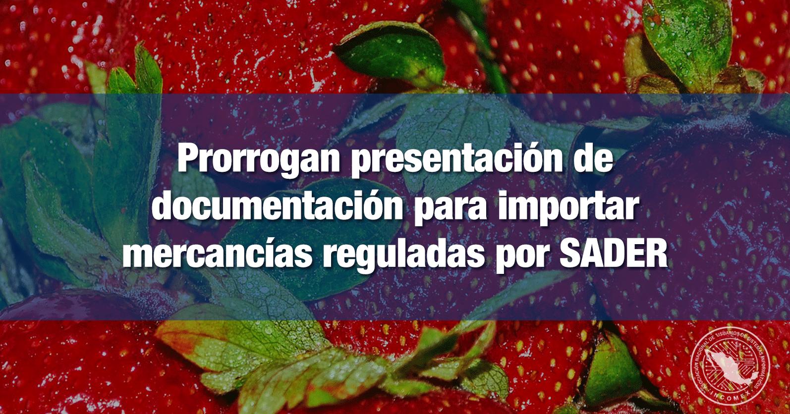 Prorrogan presentación de documentación para importar mercancías reguladas por SADER