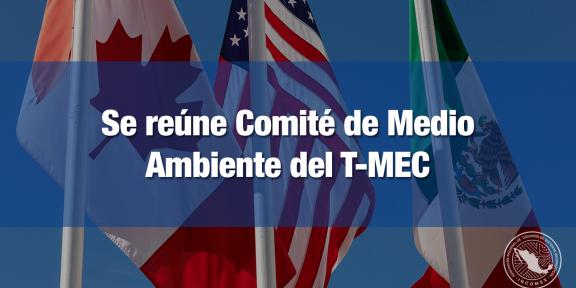 Se reunió el Comité de Medio Ambiente del T-MEC