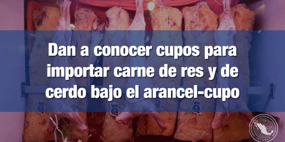 Cupos para importar carne de res y de cerdo