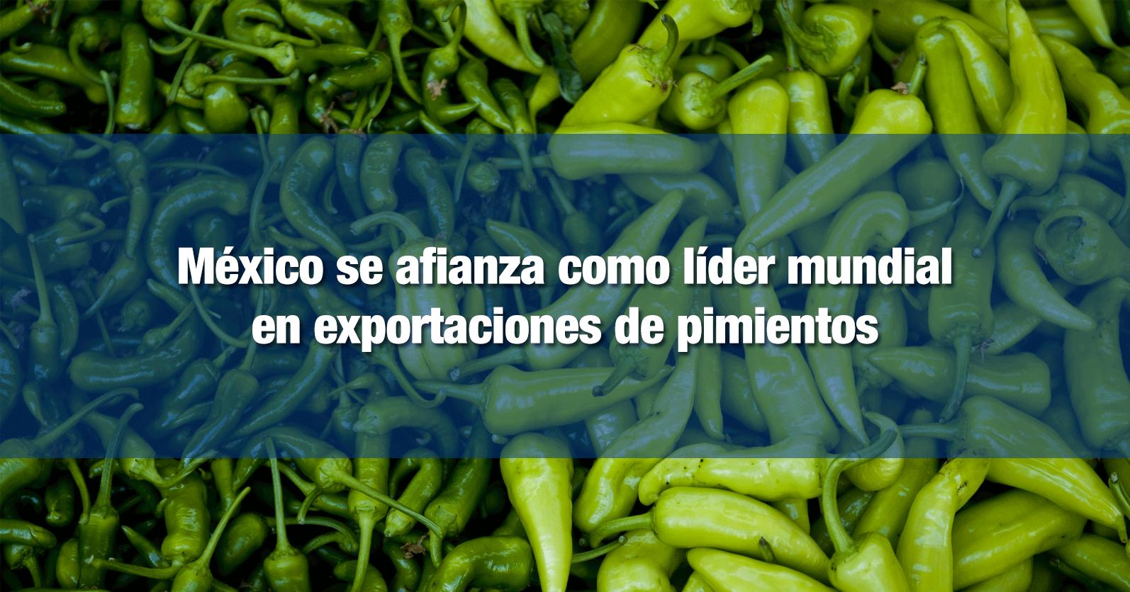 México se afianza como líder mundial en exportaciones de pimientos