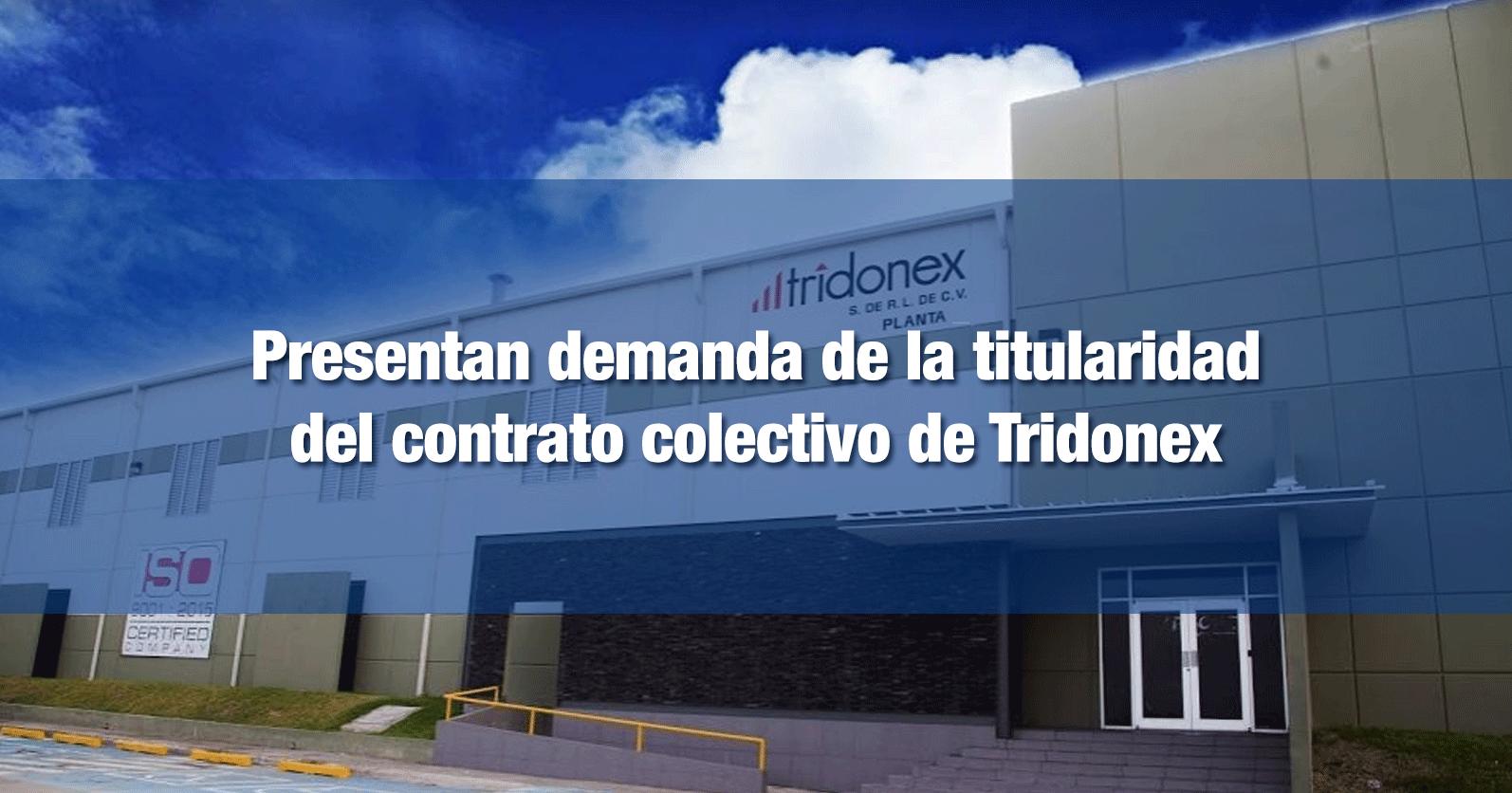 Presentan demanda de la titularidad del contrato colectivo de Tridonex