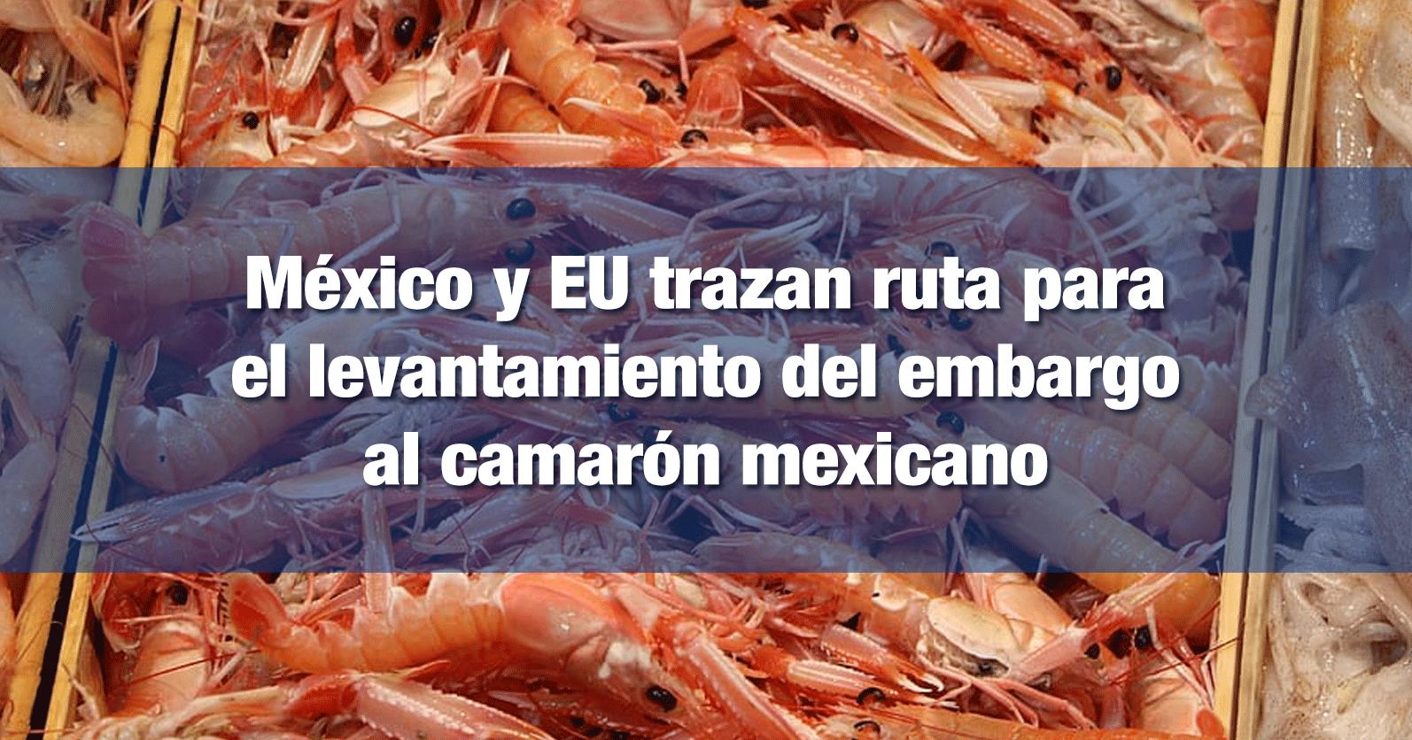 México y EU trazan ruta para el levantamiento del embargo al camarón mexicano