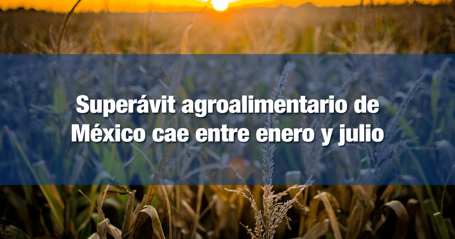 Superávit agroalimentario de México cae entre enero y julio